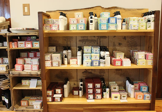 lotion and soap pic on shelf 2.jpg