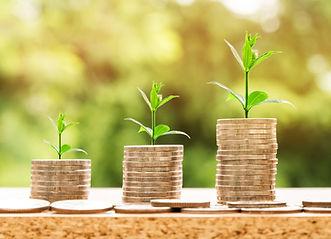 Coins & Growth.jpg