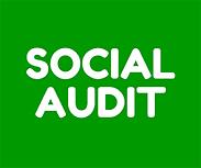 Social Audit.png