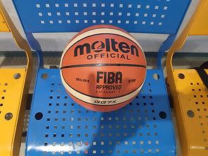 כדורסל מולטןן עור רשמי.jpg