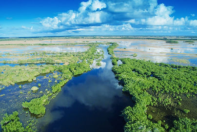 Aerial sunset view of Everglades swamp i