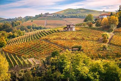 Barolo Langhe e Roero vineyards hills. A