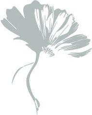 Flower100.jpg
