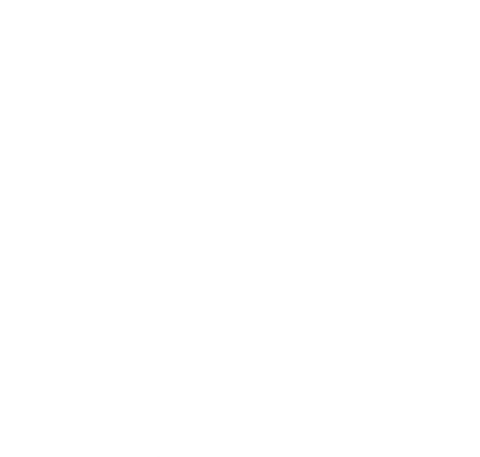 Phnx Fitness Logo2 white.png