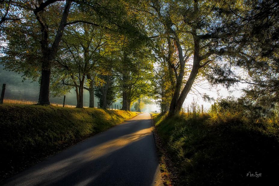 Cades Cove road entrance sunrise.jpg