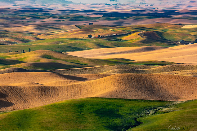 Palouse fields late sunset.jpg