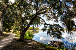 Charleston Plantation view post