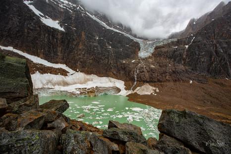 Cavell Glacier Pond and Angel Glacier
