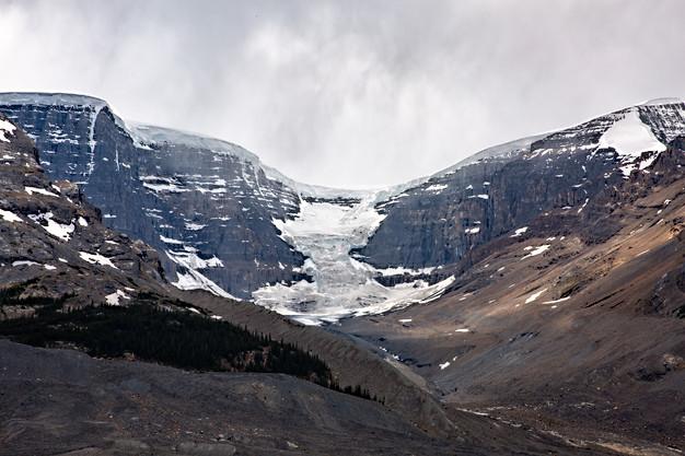 Stutfield Glacier at Icefields
