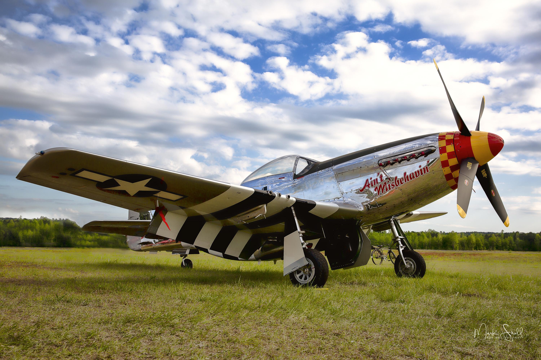 WWI P-51 Mustang