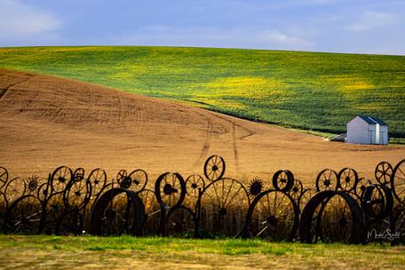sheds near artisian fence.jpg