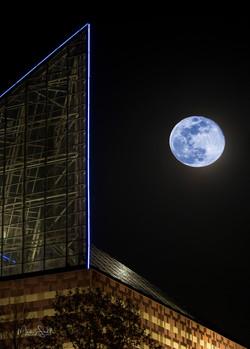 Chatt Aquarium blue moon