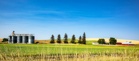 Palouse farm complete 16 x 7 view.jpg