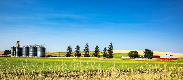Palouse farm complete 16 x 7 view.jpg