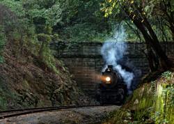 Steam Engine 1593 Ridge Tunnel v2