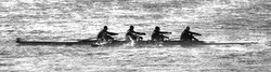 Chattanooga Hooch Four Rowers Pacing