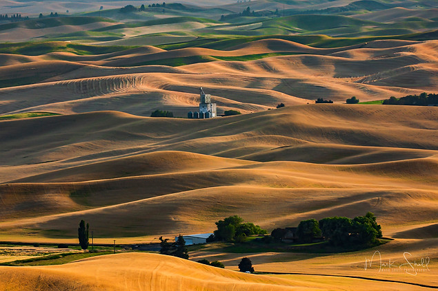 Palouse Evening Shadows