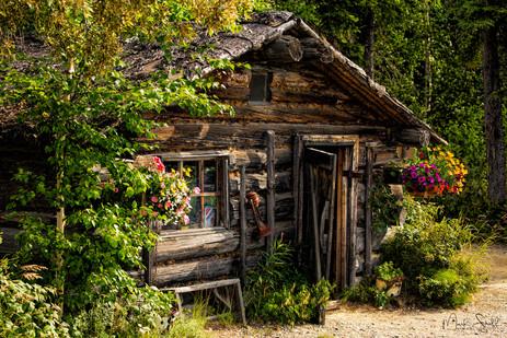 Chena Indian Cabin site