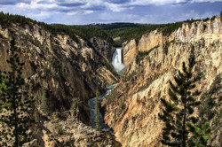 Upper Yellowstone Falls YNP