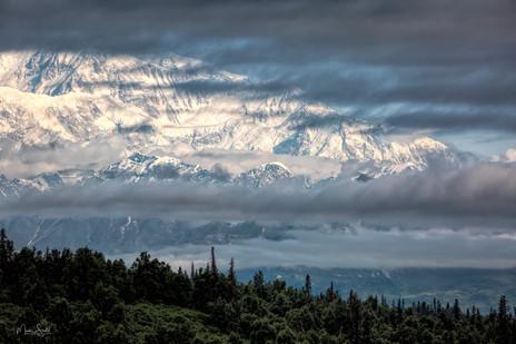Denali lodge view