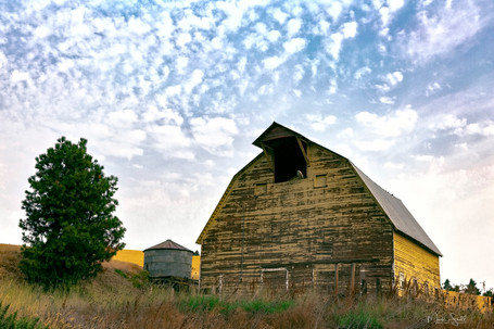 Palouse yellow barn A.jpg