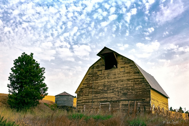 Palouse yellow barn A.jpg