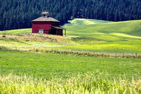 red barn near Kamiak Butte Palouse