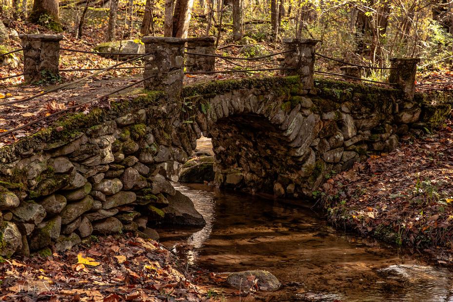 Troll Bridge Elkmont GSMNP.jpg