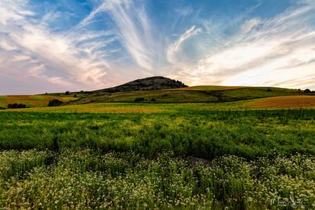 Steptoe Butte from lower field.jpg