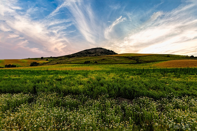 Steptoe Butte from lower field.jpg