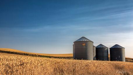 wheat silos.jpg