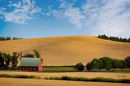 Rural Farm post.jpg