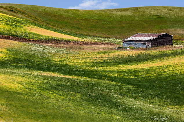 Palouse field shed.jpg