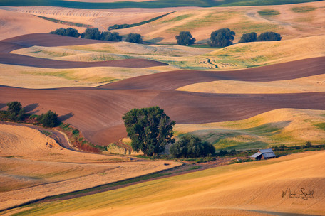 Palouse farm rolling hills.jpg