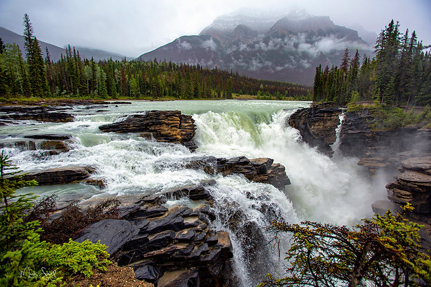 Rainy Athabasca Falls Jasper NP