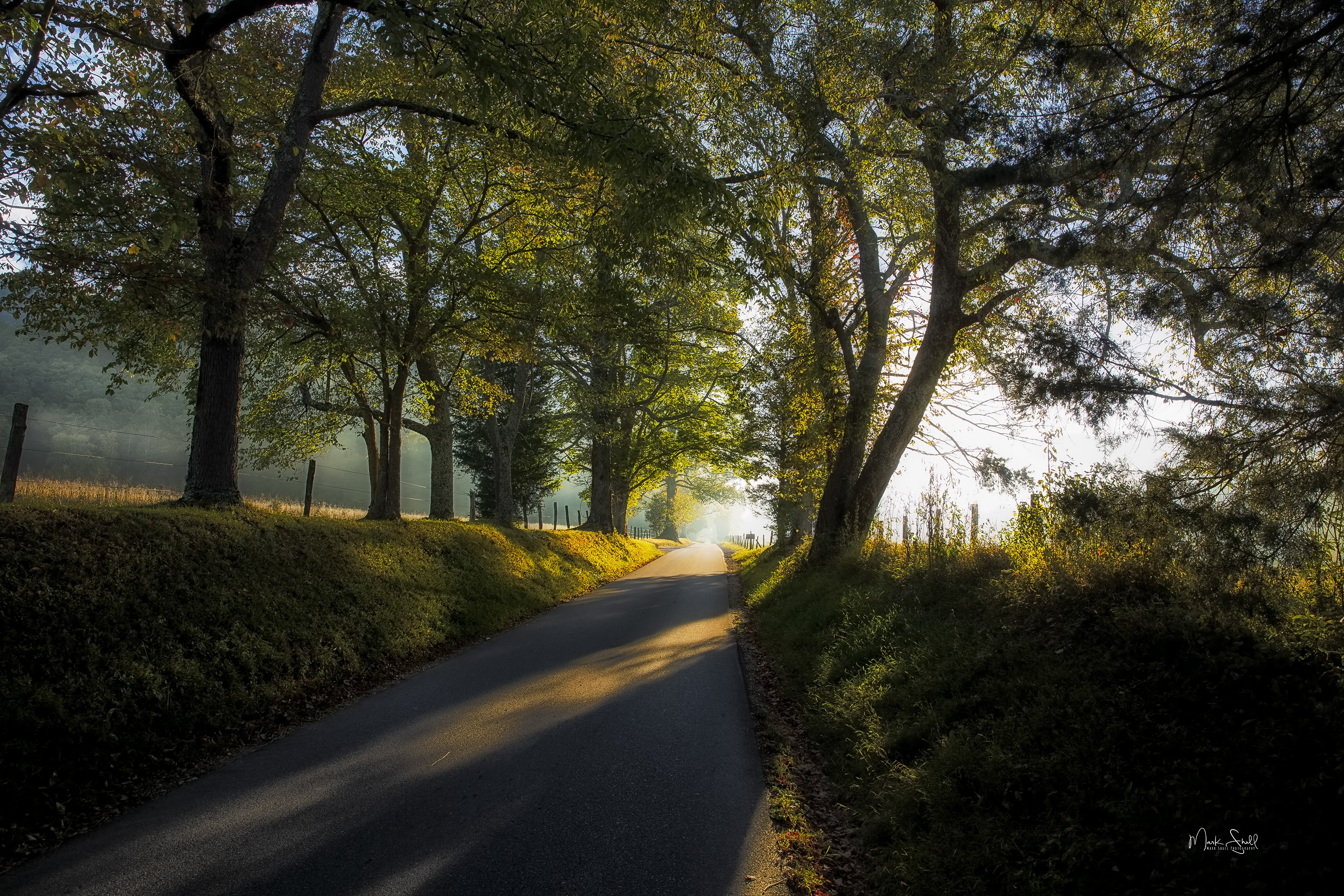 Cades Cove road entrance sunrise