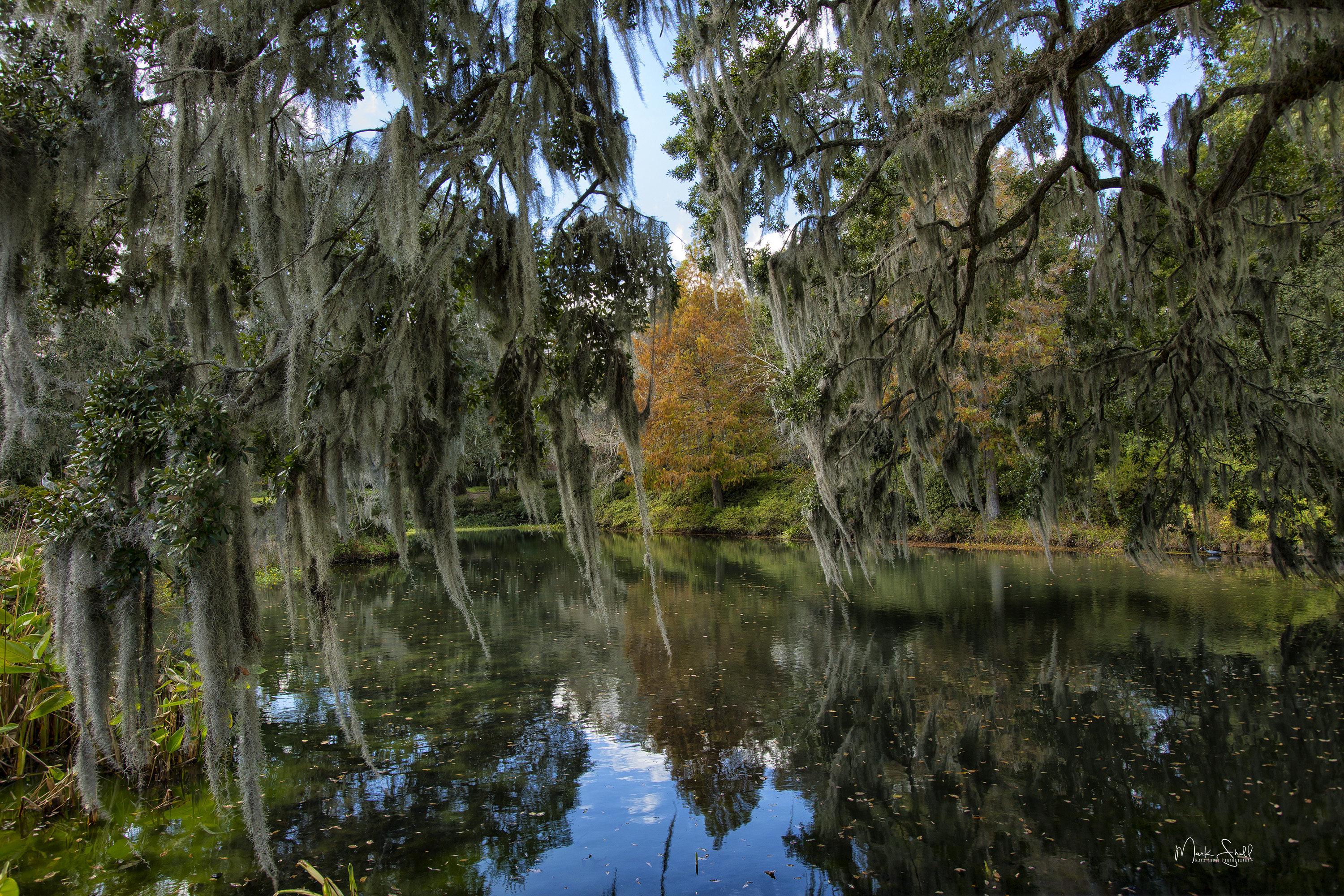 Middleton Plantation reflection pond pos