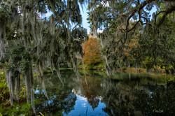 Middleton Plantation reflection pond pos