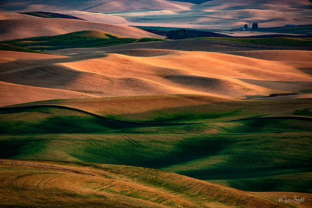 Palouse colorful sunset