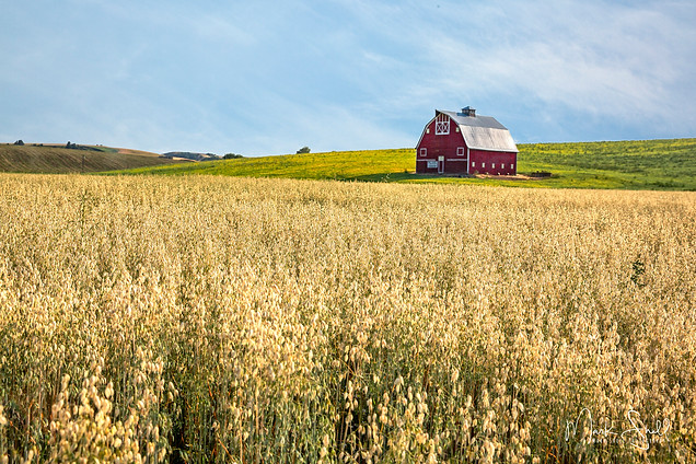 Palouse Country barn uniontwn v2.jpg