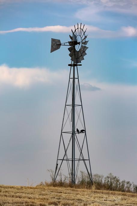 Palouse Windmill.jpg