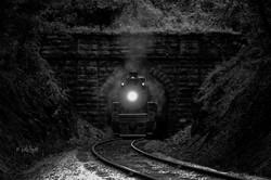 train 4501 Baldwin 1911 bw