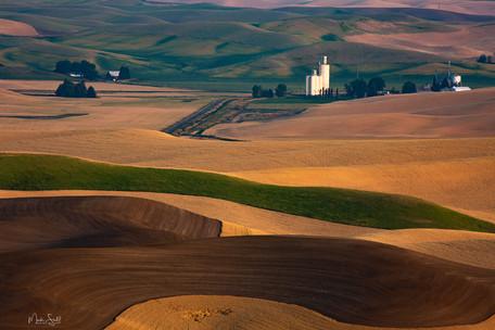 Palouse plowed field wheat field