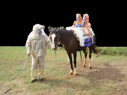 Horse Powered Sprayer