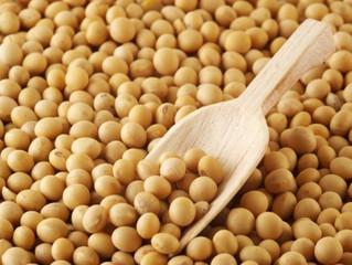 Brasil deve assumir a dianteira na produção de grãos