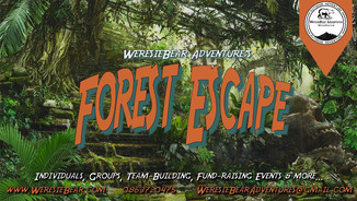 Corporate Event: Forest Escape Day.