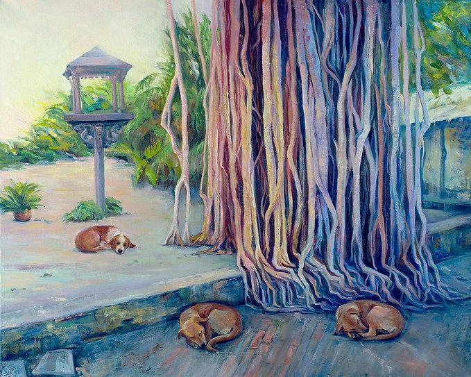Sleep under the Banyan Tree, Delhi, India, Fei Lu Art