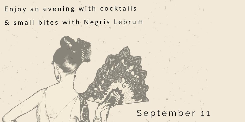 Negris LeBrum Sustainable soiree