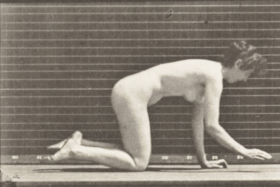 """Crawling on Hands and Knees"" by Eadweard Muybridge"