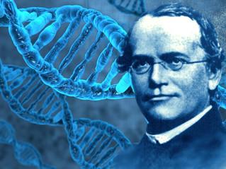 Gregor Mendel:  Monge agostiniano - Pai da Genética.
